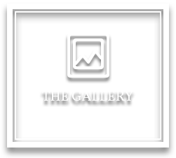 The Gallery - Michael B. Bell